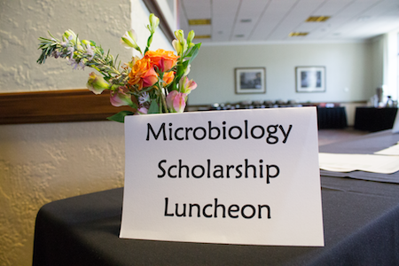 Preparing the minds of the next generation of microbiologists through scholarships