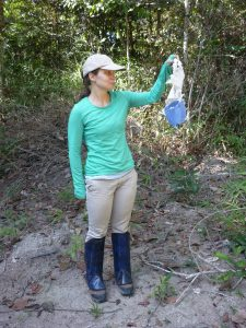 Fieldwork in the Brazilian Amazonia meant continuously trying to outsmart their savviest opponents…ants!
