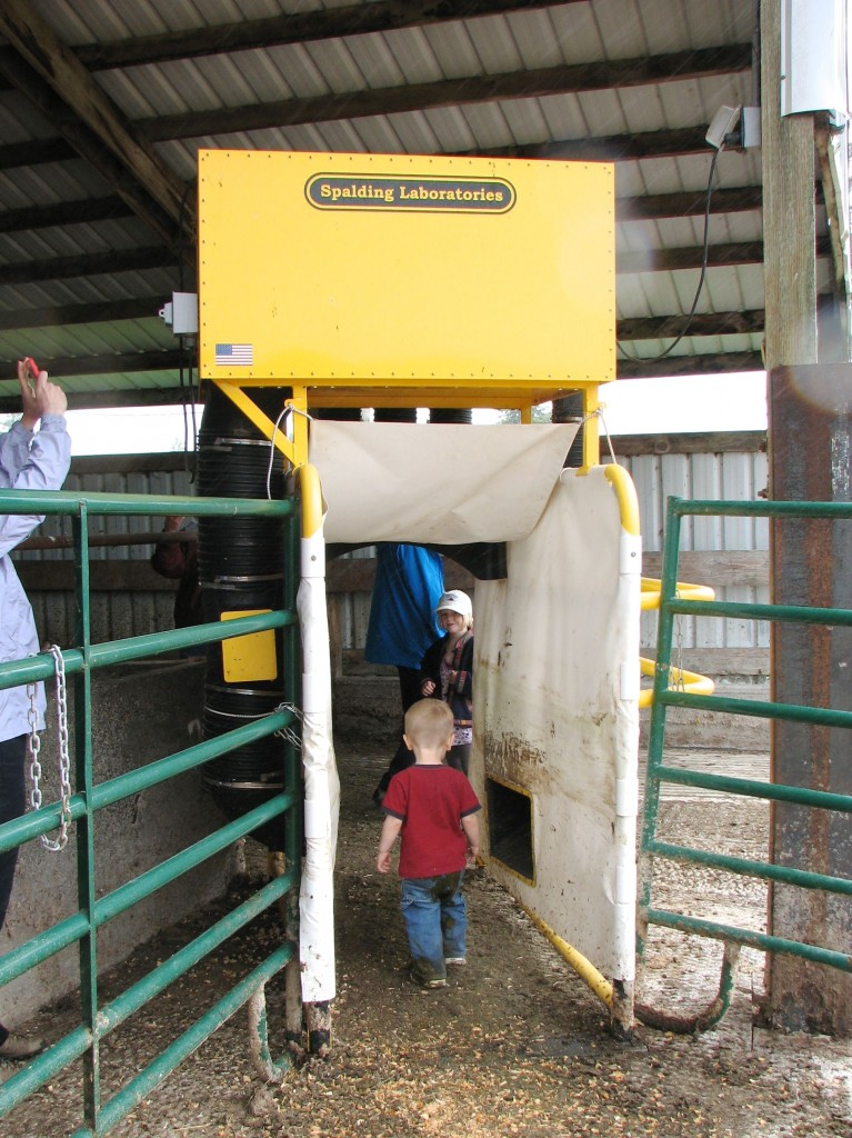 Kids take a walk through the fly vacuum!