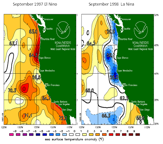 The shifting ocean temperature pattern from the El Nino Southern Oscillation is a major cause of climate variability in Oregon, causing differences of several degrees between warm phase and cool phase. Source: National Oceanic and Atmospheric Administration (NOAA), National Environmental Satellite, Data, and Information Service (NESDIS), CoastWatch program.