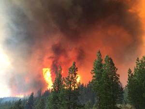 Cornet-Windy Ridge Fire on August 12, 2015