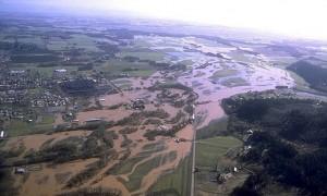Flooded Willamette River, February 1996.