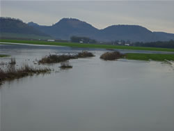 Flooded fields in December