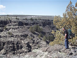 Overlooking the canyon on the Blitzen River