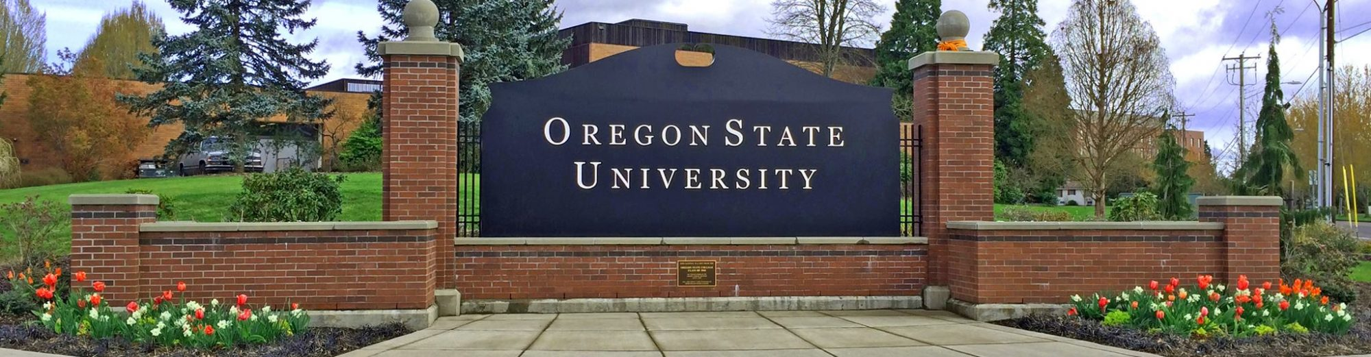 Forest Health in Oregon: State of the State