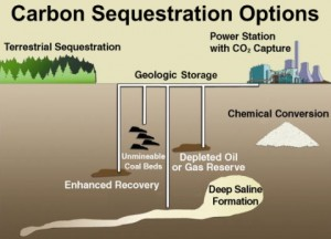 carbon_sequestration_options_480px
