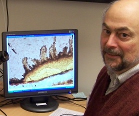 Oregon State University's Martin Fisk with a computer image of tracks and tunnels from rock-eating microbes. (photo courtesy of OSU)