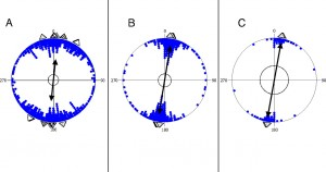 Axial data revealing the N-S alignment in three ruminant species under study. (A) Cattle. (B) Roe deer. (C) Red deer. Each pair of dots (located on opposite sites within the unit circle) represents the direction of the axial mean vector of the animals' body position at one locality. The mean vector calculated over all localities of the respective species is indicated by the double-headed arrow. The length of the arrow represents the r-value (length of the mean vector), dotted circles indicate the 0.01-level of significance. Triangles positioned outside the unit circle indicate the mean vectors of the cattle data subdivided into the six continents (dotted: North America; gray: Asia; checkered: Europe; striped: Australia; black: Africa; white: South America) (A) and the mean vectors of resting (black) and grazing (white) deer, and of deer beds (dotted) (B: roe deer; C: red deer).