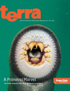 Terra-Cover-Final2