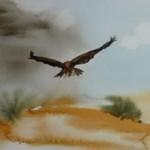Desert raptor (Watercolor by Dominique Bachelet)