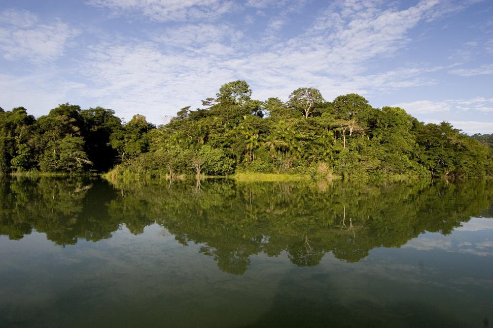 Barro Colorado Island (Photo: Christian Ziegler)