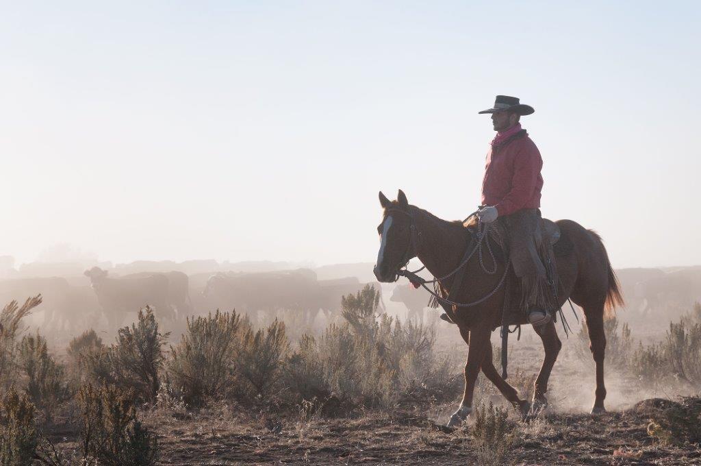 Henry Vaughn rides