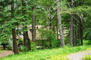 Peavy_Arboretum_lodge