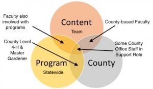 Three intersecting circles Content team, Program statewide, County