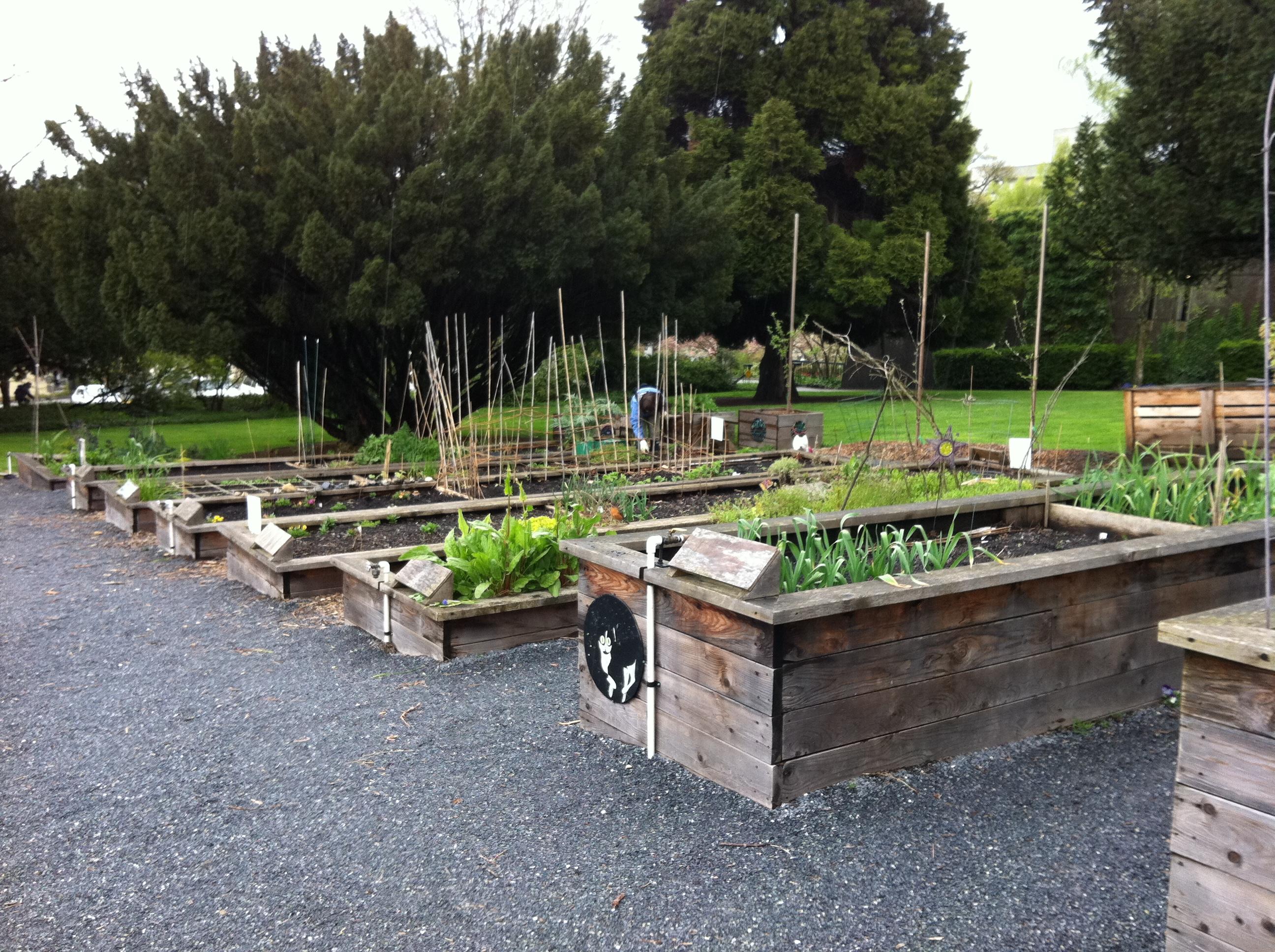 garden ecology lab