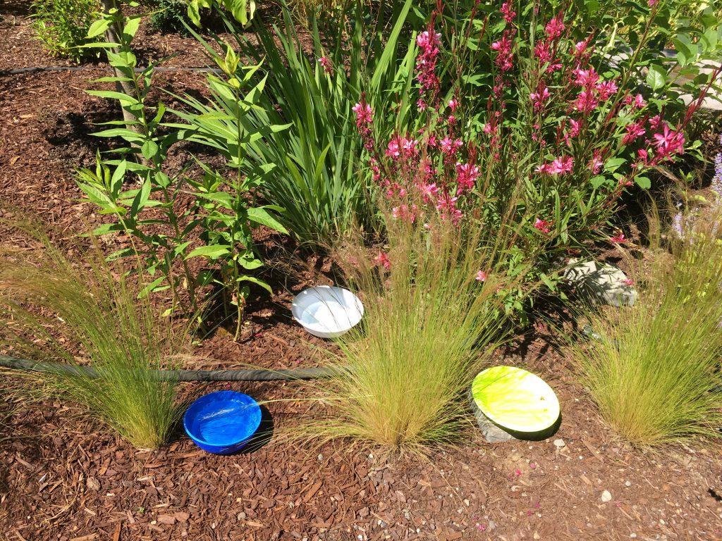 OverlyHonestMethods - Garden Ecology Lab