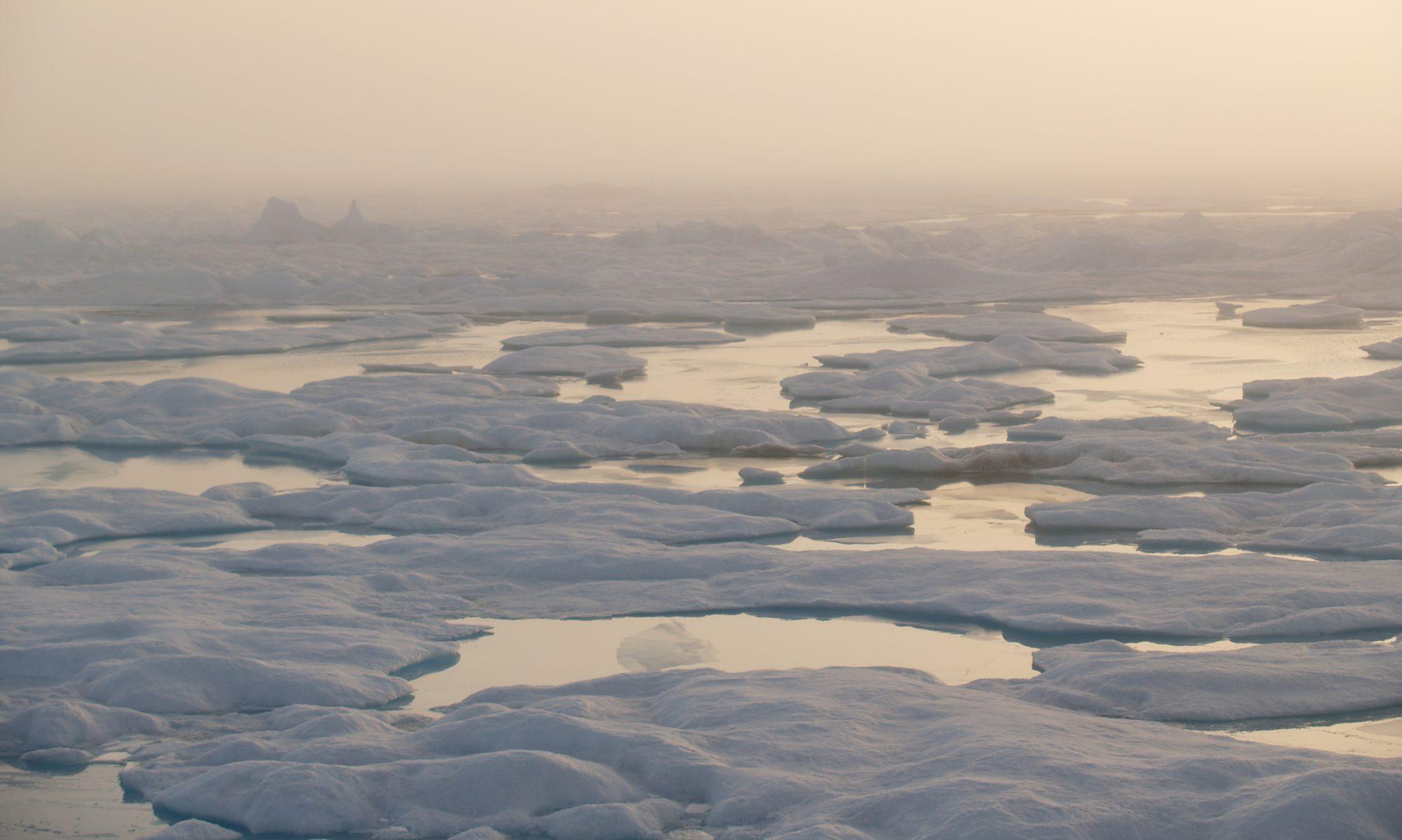 Siku: Sea Ice Discrete Element Method Model