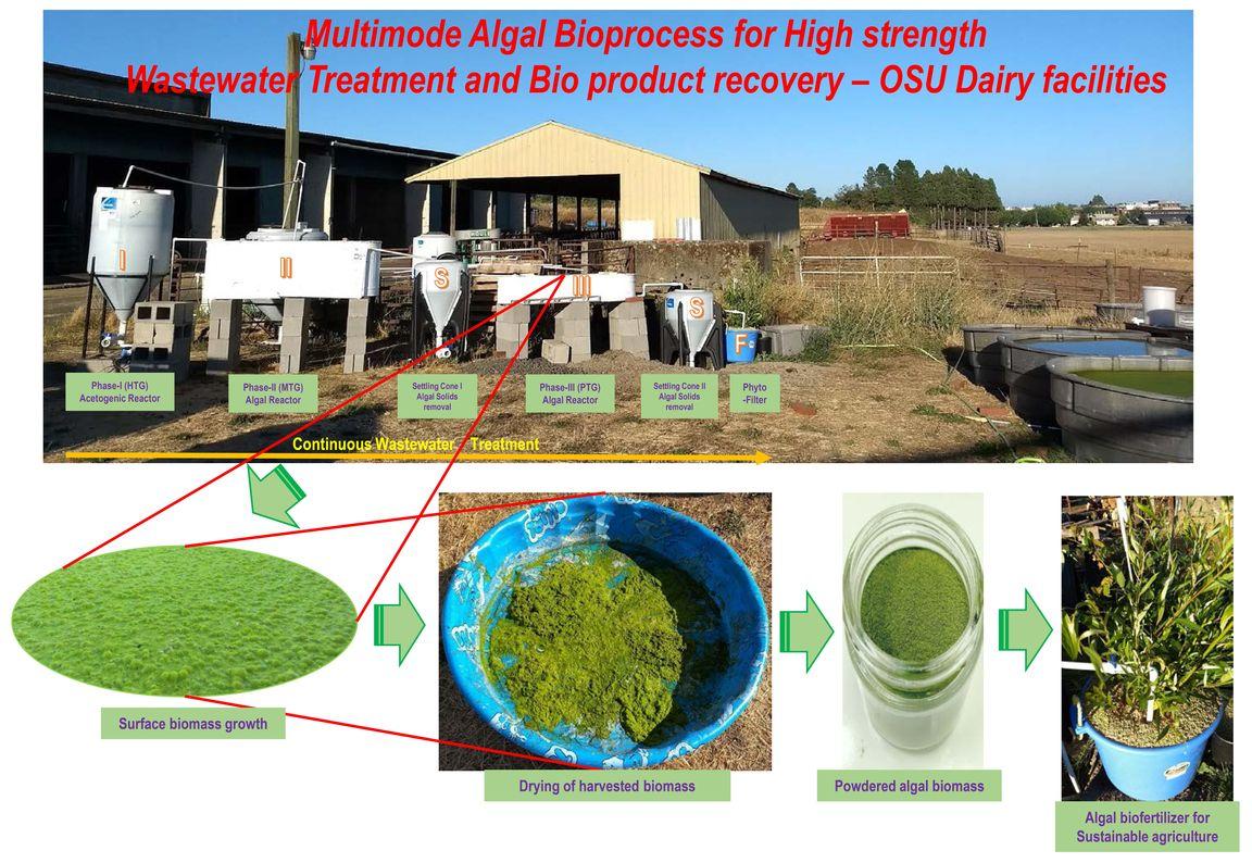 Dairy Wastewater Treatment Facility OSU_02