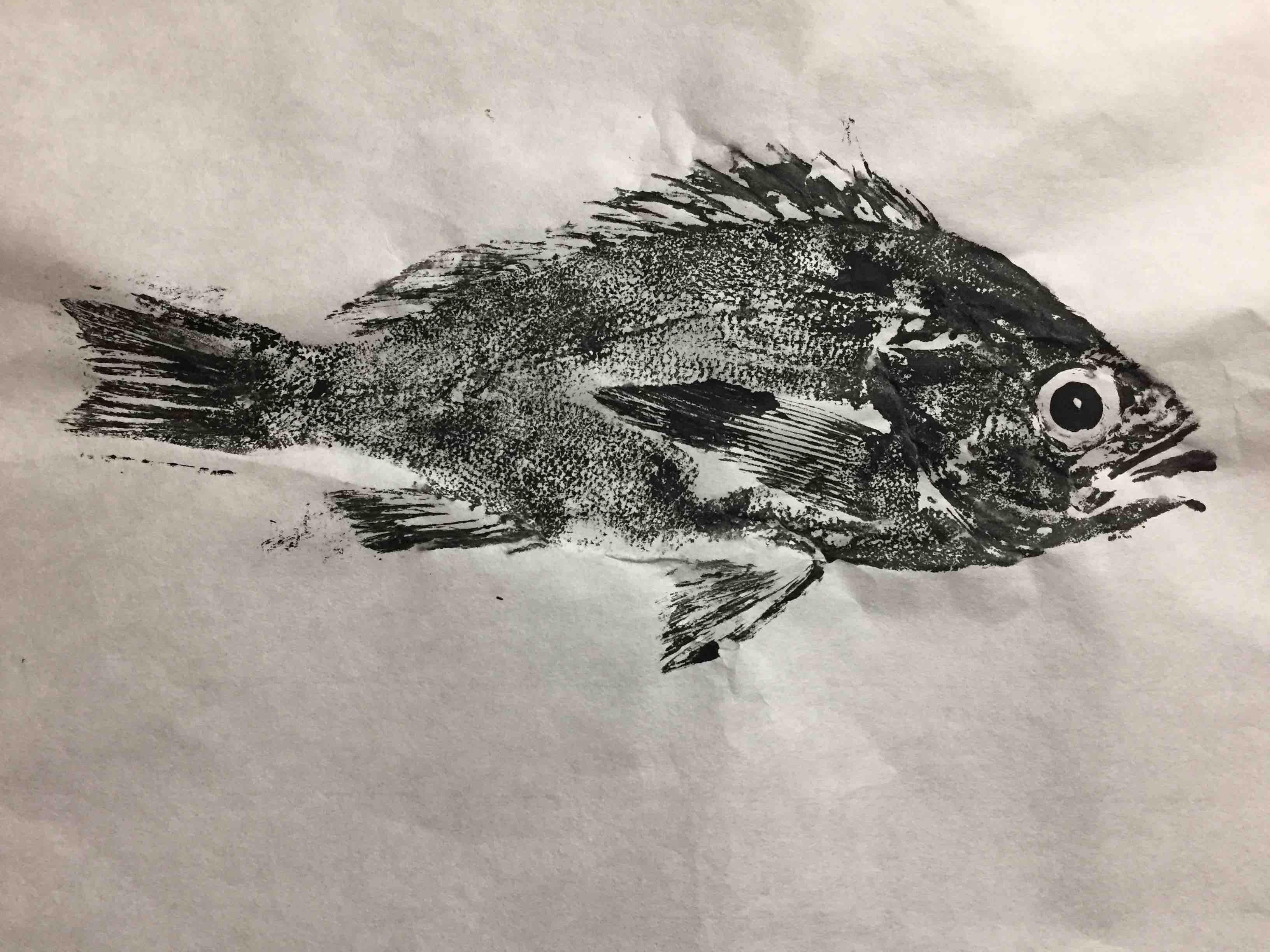 Gyotaku Fish Printing 2017_18