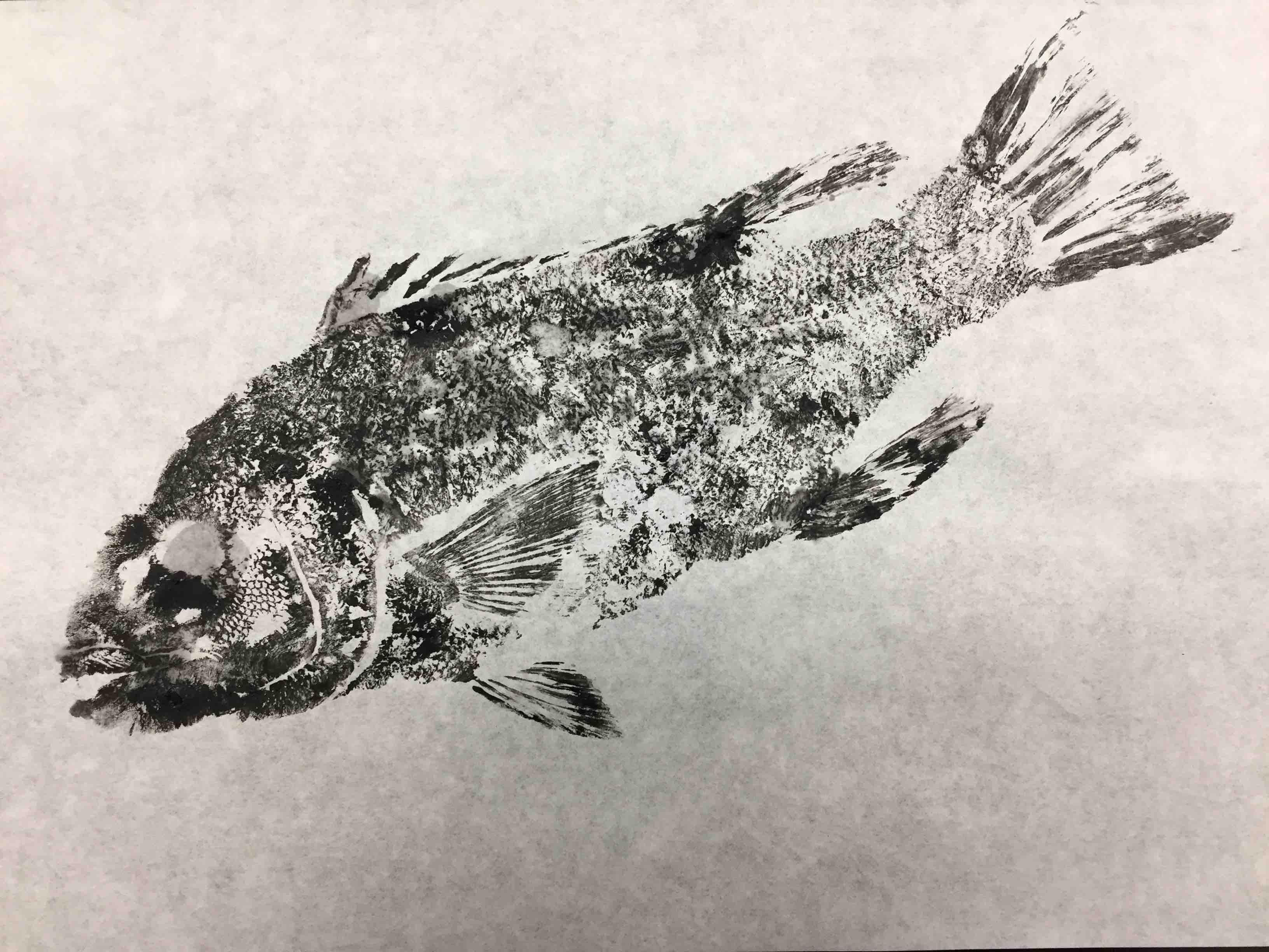 Gyotaku Fish Printing 2017_9