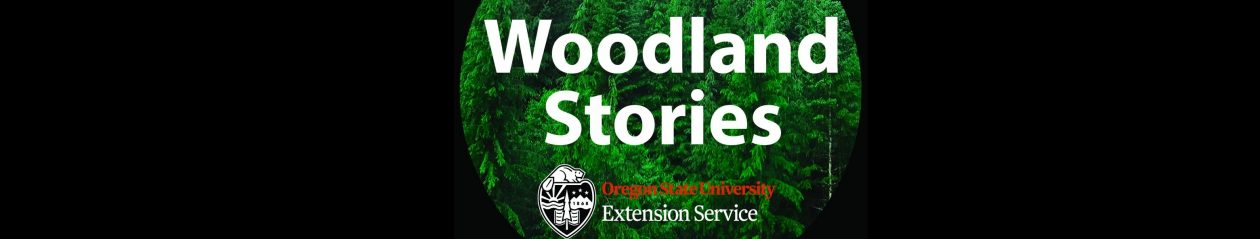 Woodland Stories