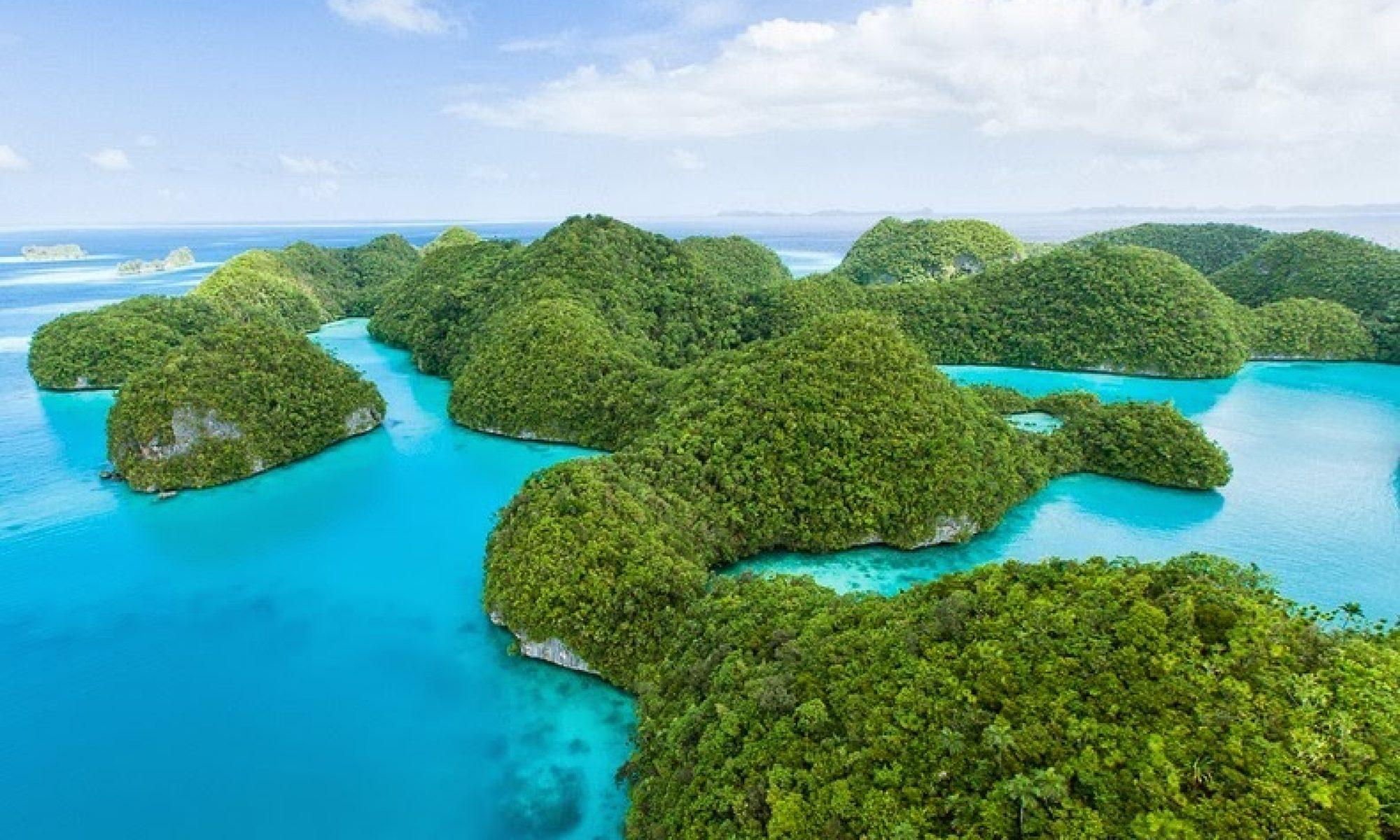 Palau 2018: From Ridge to Reef