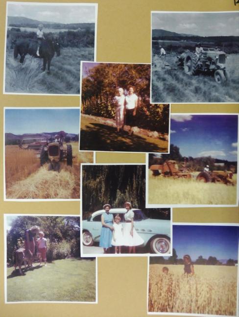 Sanders farm, CFR 1064