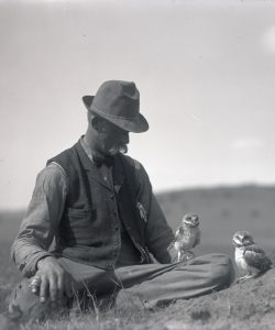 Herman T. Bohlman sitting with young burrowing owls. OHS Research Library, Org. Lot 369, Finley A1751.