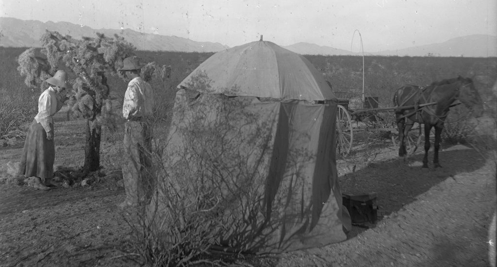 Umbrella blind set up at gnatcatcher's nest. William L. and Irene Finley standing by cholla cactus. Arizona, 1910. OHS Research Library, Org. Lot 369, Finley A0063.