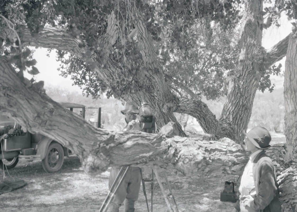 William and Irene Finley photographing roadrunners in Arizona, 1930. OHS Research Library, Org. Lot 369, Finley D0836.