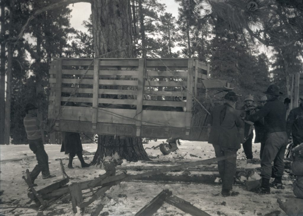 A group of men lowering an elk crate onto skids after the snow became too deep to traverse by wagon. OHS Research Library, Org. Lot 369, Finley B0488.