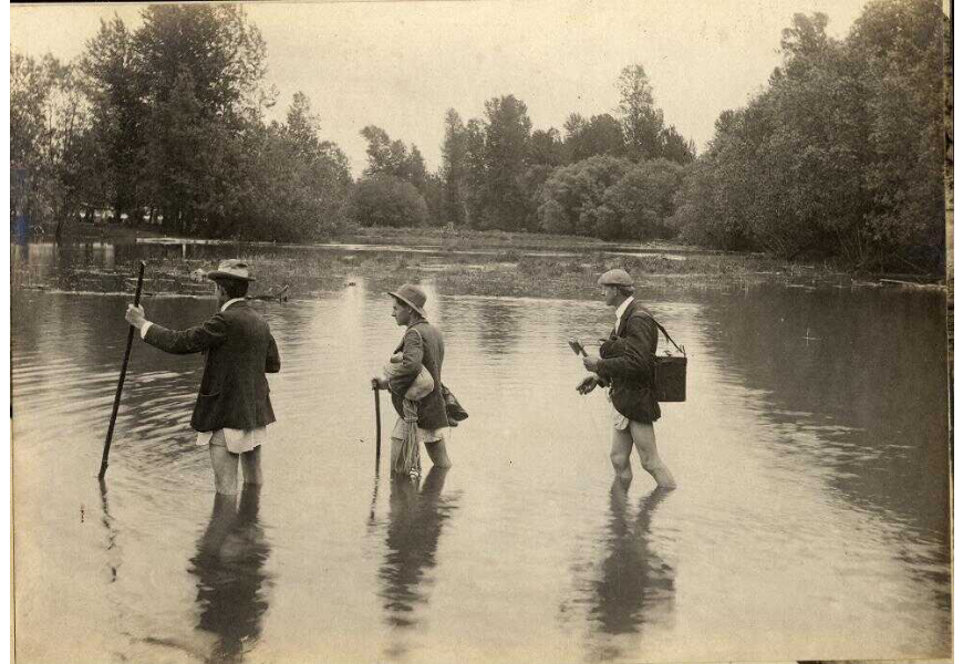 Ellis Hadley (left) William Finley (center) and Herman Bohlman wading across a river on their way to a red-tailed hawks' nest, circa 1900.