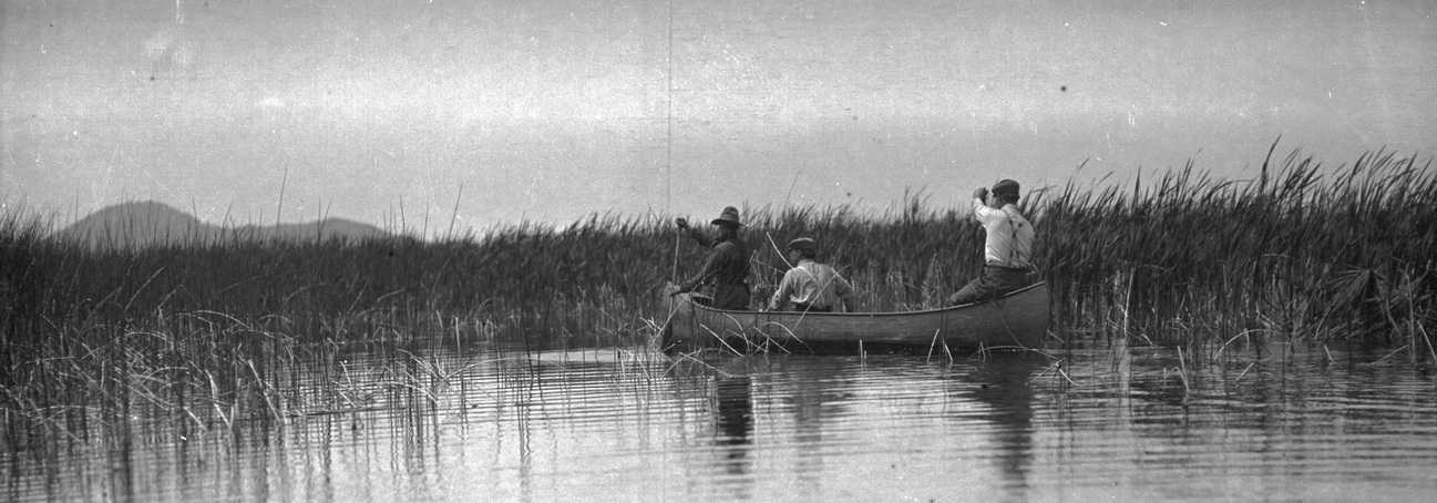 Dallas Lore Sharp (center) and two unidentified Audubon Game Wardens paddling in a canoe through the tules on Lower Klamath Lake, 1912. OHS Research Library, Org. Lot 369, Finley B0319.