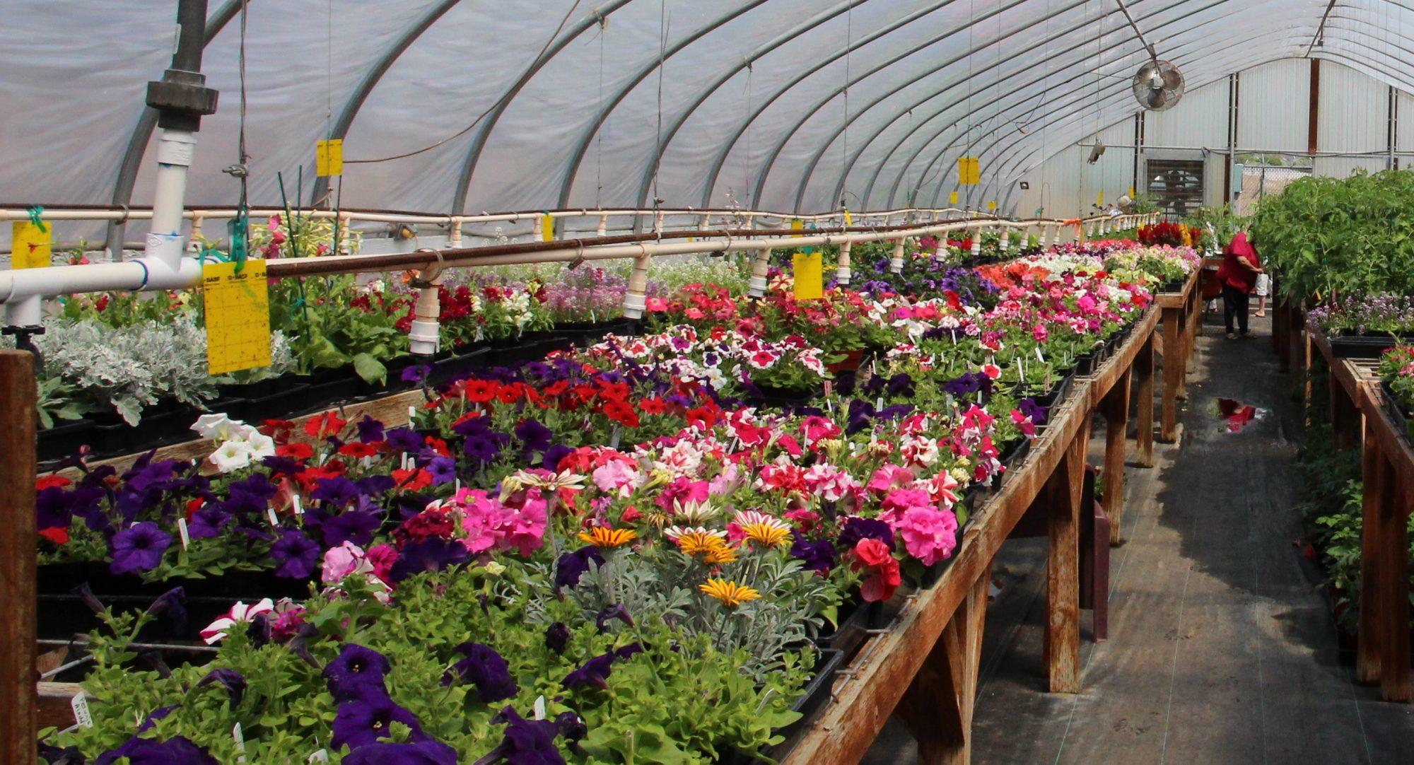 Wasco County Master Gardener Association