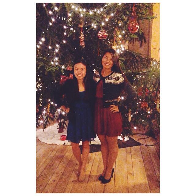 christmas 2015-2