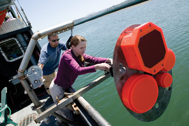 Kelly Benoit-Bird