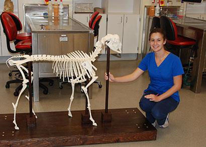 Danielle Butler with the goat skeleton she built this summer.