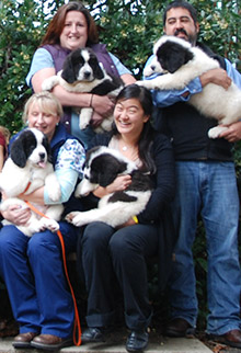 In 2013, Dr. Jennifer Ree (bottom right) helped surgically deliver ten puppies whose mother was in distress.