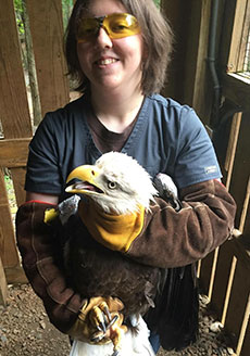 Kyra Knutson earned credit while working at the Wildlife Center of Virginia.
