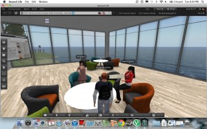 BAP tutoring in Second Life