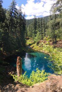 Tamolitch Blue Pool