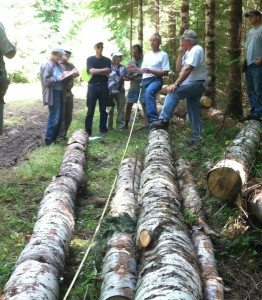 Learning about log markets on family forest land near Vernonia