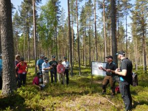 Mellanskog Forester Lars Eric explaining management practices such as regeneration, thinning and fertilization in a 100-year-old stand of Scotts pine.