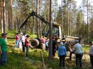 Our group observing Log Max and Eco Log equipment in their native habitat of central Sweden.