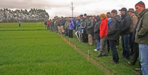 2013 IHSG Workshop New Zealand (TG Chastain photo)