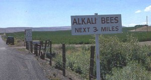 Speed limits on rural roads where alkali bees are commonly employed in alfalfa seed production (TG Chastain photo)