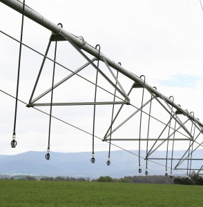 Irrigation system (TG Chastain photo)