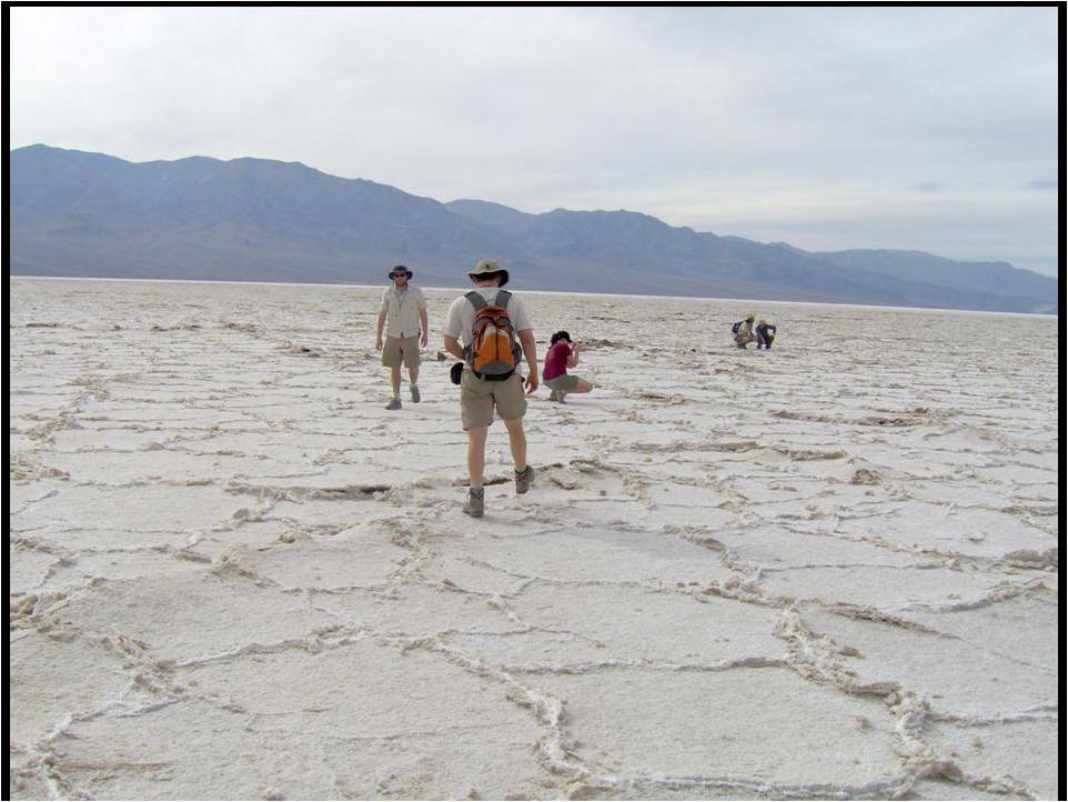 The club takes a stroll onto the playa at Badwater Basin. You can see that the desert floor is covered with a layer (several inches thick) of evaporaties (it was salty, so it's probably at least, in part, halite). Note that the evaporite crust has broken up in a mudcrack-like fashion.