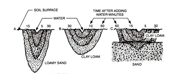 Illustration showing water movement in soils: loamy sand, clay loam, and sand.