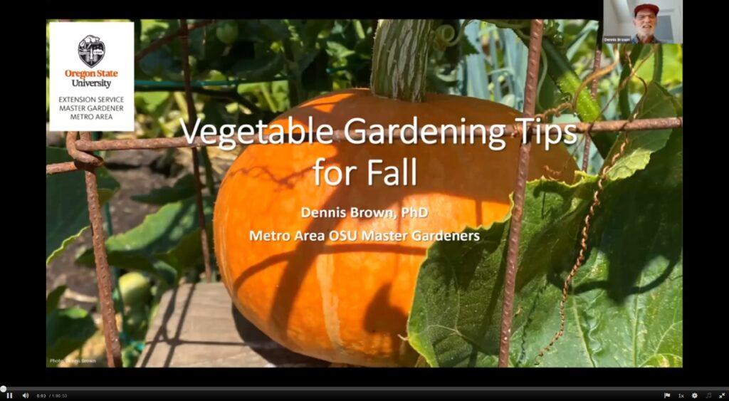 Screen shot of webinar 'Vegetable Gardening Tips for Fall' with image of pumpkin. Thumbnail image of presenter - a man wearing a cap.